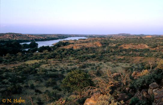 Limpopo Valley Horse Safaris